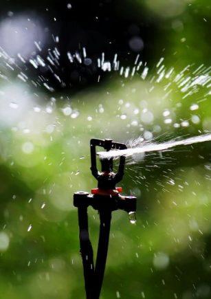 Sprinkler_Irrigation_-_Sprinkler_headssees